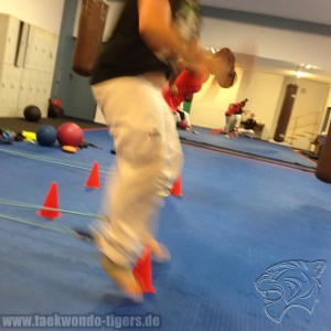Funktionales Taekwondo Training der Taekwondo Tigers Berlin in Reinickendorf