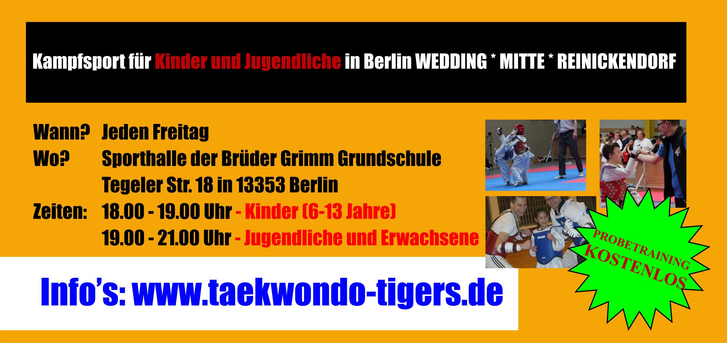 Flyer der Kindergruppe der Taekwondo Tigers Berlin