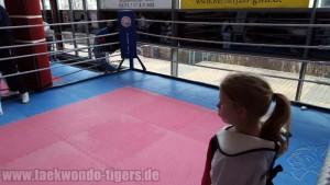 Taekwondo Tigers Berlin Wedding beim King of Kick in Marzahn